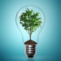 Miljøvenlige reklamegaver og firmagaver